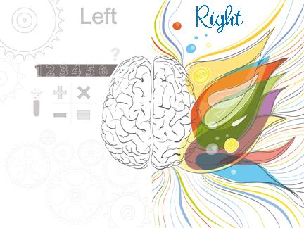 L_R_Brain copy