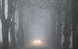 Twink McKenney - Fog